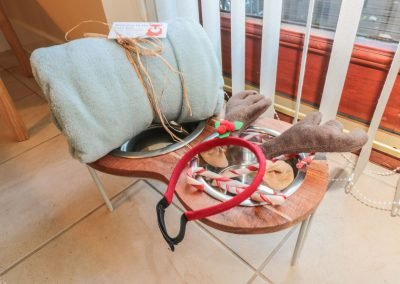 dog-friendly-accomodation-whitby (9)